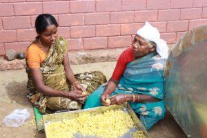 Gooseberry processing at Banglapadigai production centre