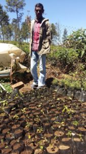 Kuttan with his saplings at the nursery