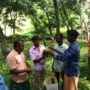 Beekeeping_Kerala State Farming Coorporation